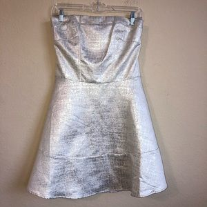 Express Silver Metallic Strapless Dress